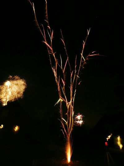 Celebration Night Firework Display Sparks Exploding Motion Illuminated Sky Event Eyeem Fireworks Eyeem Market Eyeemphotography EyeEm Gallery Special Moment EyeEm Fun Dark And Light Colourful Fireworks NewYear Sylvester Party - Social Event Multi Colored Celebration Friends