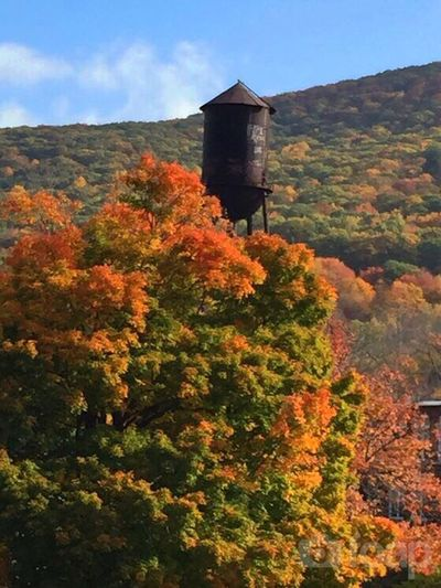 Fall Colors Autumn In New England Water Towers Water Tower New England Villages IPSTrees&Leaves IPSNatural