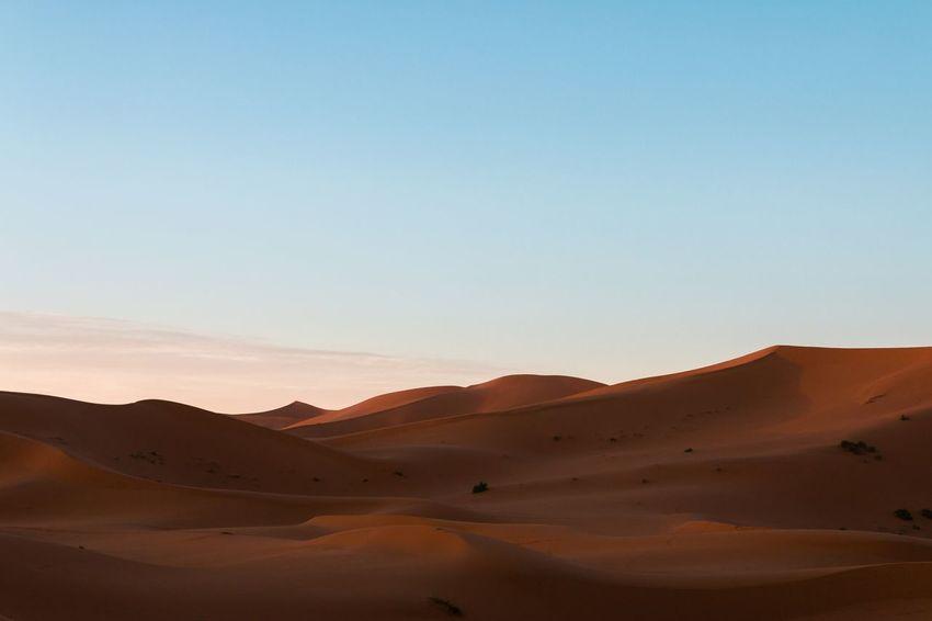 Dawn in the Dunes. Erg Chebbi Merzouga Morocco Dunes Desert Dawn