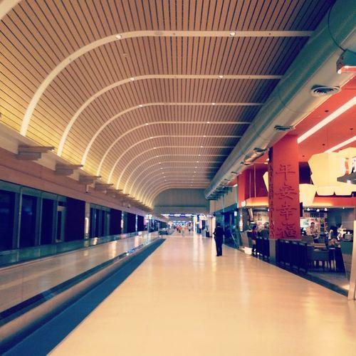 Tpe 桃園國際機場