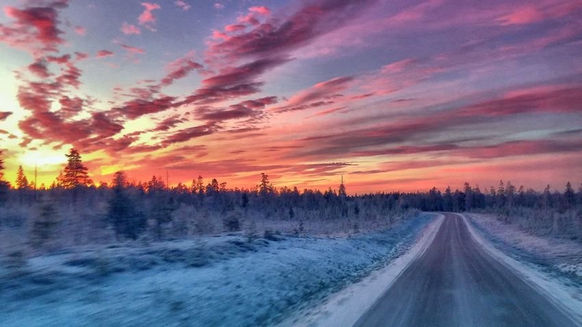 Winter Sweden Landscape_Collection Traveling Eye Em Around The World Truckerslife Nature_collection Pictureoftheday Sunrise_sunsets_aroundworld Eye Em Nature Lover North Trucking On The Road