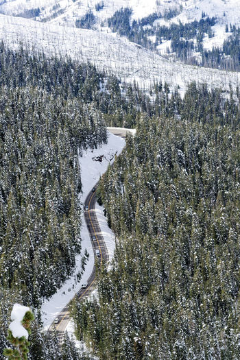 Aerial view of snow covered land