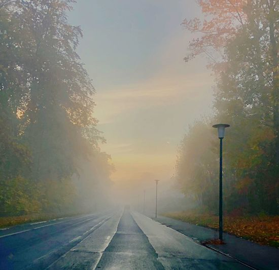 Fog In The City EyeEm Best Shots Light And Shadow EyeEm Best Shots Autumn Foggy Morning Road Transportation The Way Forward Fog Direction Sky Nature Road Marking Marking Diminishing Perspective Sign Symbol No People Tranquility vanishing point Environment Tree Street Beauty In Nature Outdoors Autumn Mood