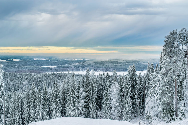 Beauty In Nature Cloud - Sky Cold Temperature Day Deep Snow Environment Frozen Landscape Mountain Nature No People Outdoors Polar Climate Puijo Scenics Sky Snow Snowing Tree Weather White Color Winter New Frontier