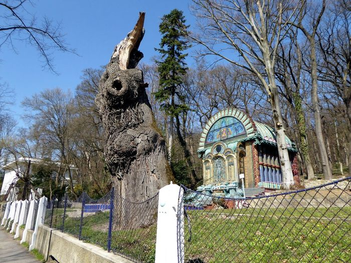 1000year old oaktree trunk For My Friends😚 Lucky Me🦄 Vienna❤ Art Museum Ernst Fuchs Otto Wagner Ernst Fuchs Museum Http://www.ernstfuchsmuseum.at/index.php?id=1 Oldest Aoktreetrunk From Vienna Tree Sky
