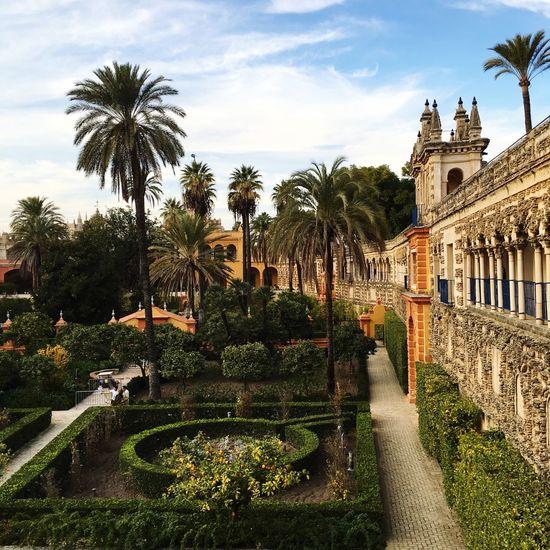 Erasmus Photo Diary Trip at Alcazar Sevilla Garden Taking Photos Enjoying Life