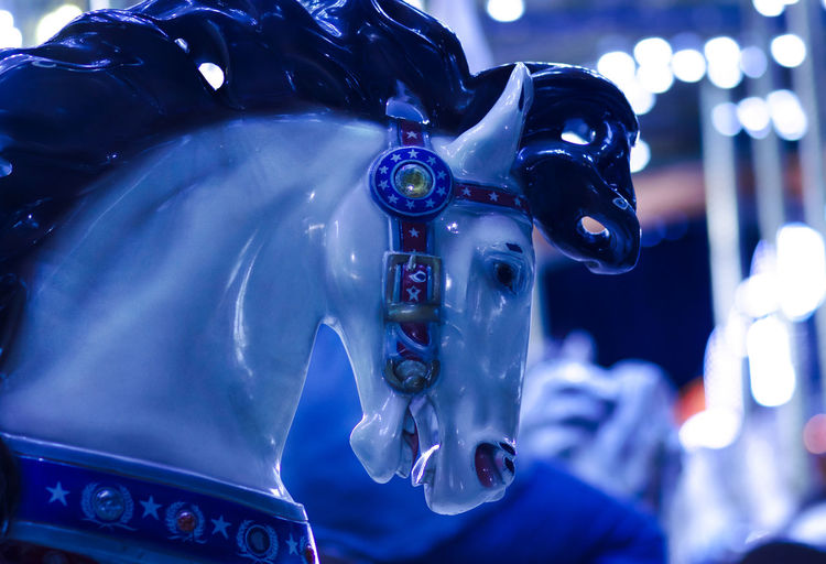always been fascinated with carousel horses Amusement Ride Blue Carousel Horse Carousels Fine Art Photography Horse Low Angle View No People Rides At Fair Still Life Photography