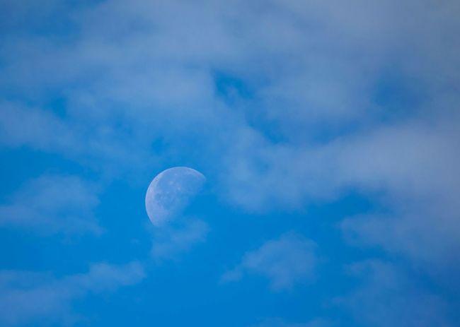 Bluesky Blue Sky Blue Moon The Moon Moon Shots Moonshine Beautiful Moon