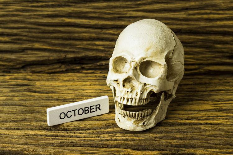 Death Genocide Ghost Horror Memorial Murder NAZI October Skeleton Torture Black And White Bone  Clock Dead History Human Killing Museum Nazism Prison Skulls Skulls And Bones Sky Still Life Wooden