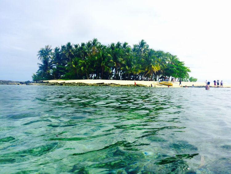 Perfect little island Beach Beauty In Nature Clear Water Day Island Nature Outdoors Palm Tree Paradise Philippines Scenics Sea Siargao Sky Tranquil Scene Tranquility Travel Travel Destinations Tropical Climate Vacations Water
