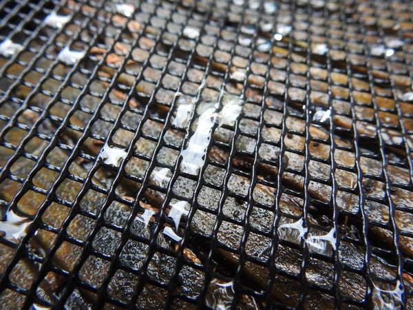 No People Abundance Large Group Of Objects Music Close-up Indoors  Day Nature Low Angle View Net Mesh