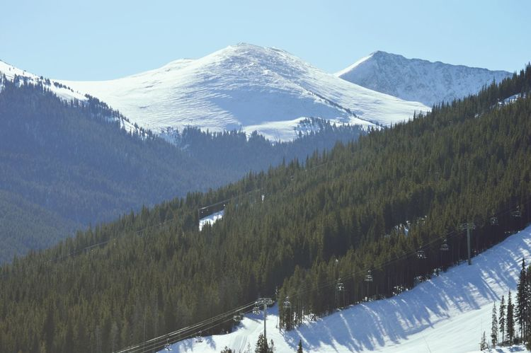 Snow Mountain Snowcapped Mountain Winter Cold Temperature Landscape Pinaceae Scenics Blue Nature Mountain Peak Tree Forest Outdoors Mountain Range Social Issues Fog Environment Beauty In Nature Sky Coloradorockies Colorado Mountians Tranquility Fresh On Eyeem  Eyeem Market