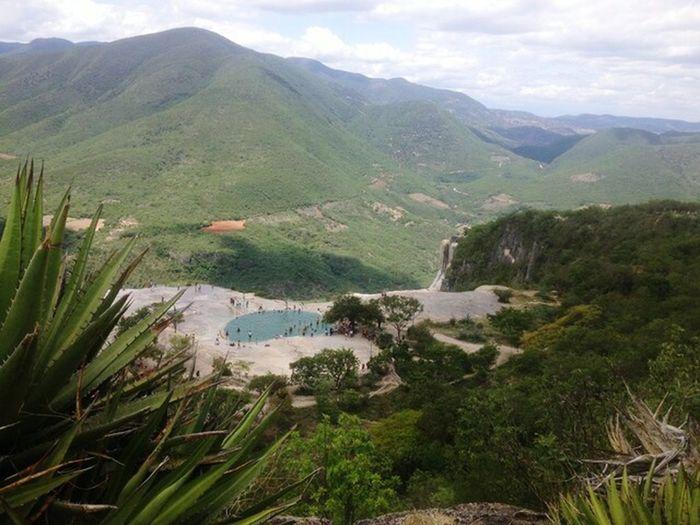 🍏 Oaxaca Mexico Garden Zapoteca Mountain Tree Water Sky Grass Landscape