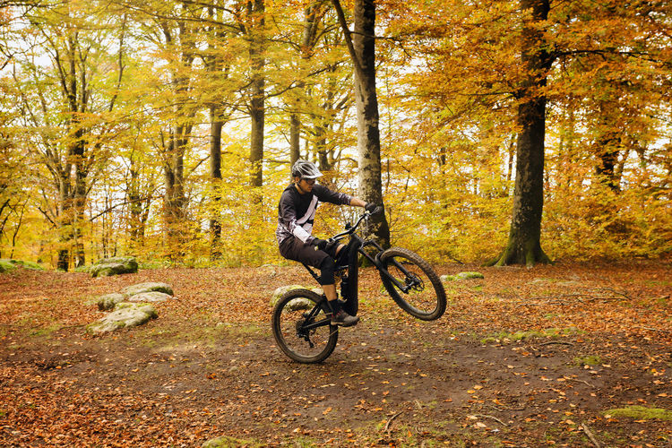 A boy on a mountain bike goes through a trail in the beech forest, lifting the bicycle on a single wheel. In the background the trees and the fallen leaves with the warm colors of autumn. Tree Autumn Land Plant Forest Nature Bicycle Change Transportation One Person Ride Riding Day Full Length Leisure Activity Lifestyles Real People Land Vehicle Leaf Plant Part Outdoors MTB Biking Athlete Guy Cross