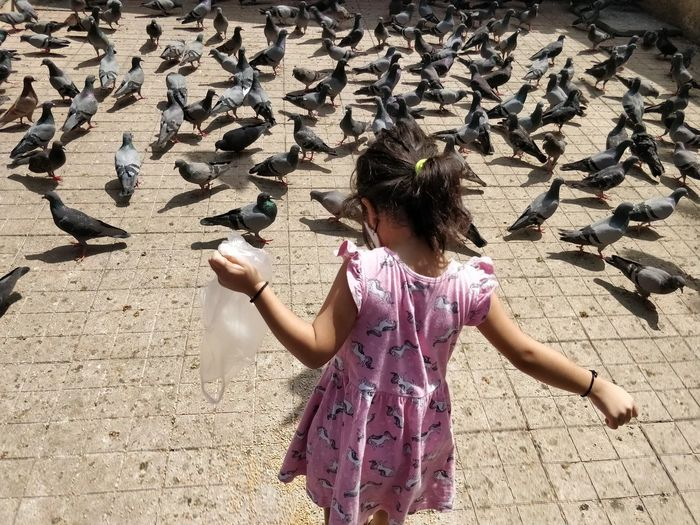 Low angle view of woman feeding birds