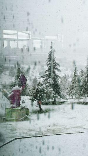 Dışarıda lapa lapa yağan karın daha fazlası içime yağıyor... Snow Day ❄ Dışarıdakaryağıyor Ineedamiracleformylostsoul Karyağınca