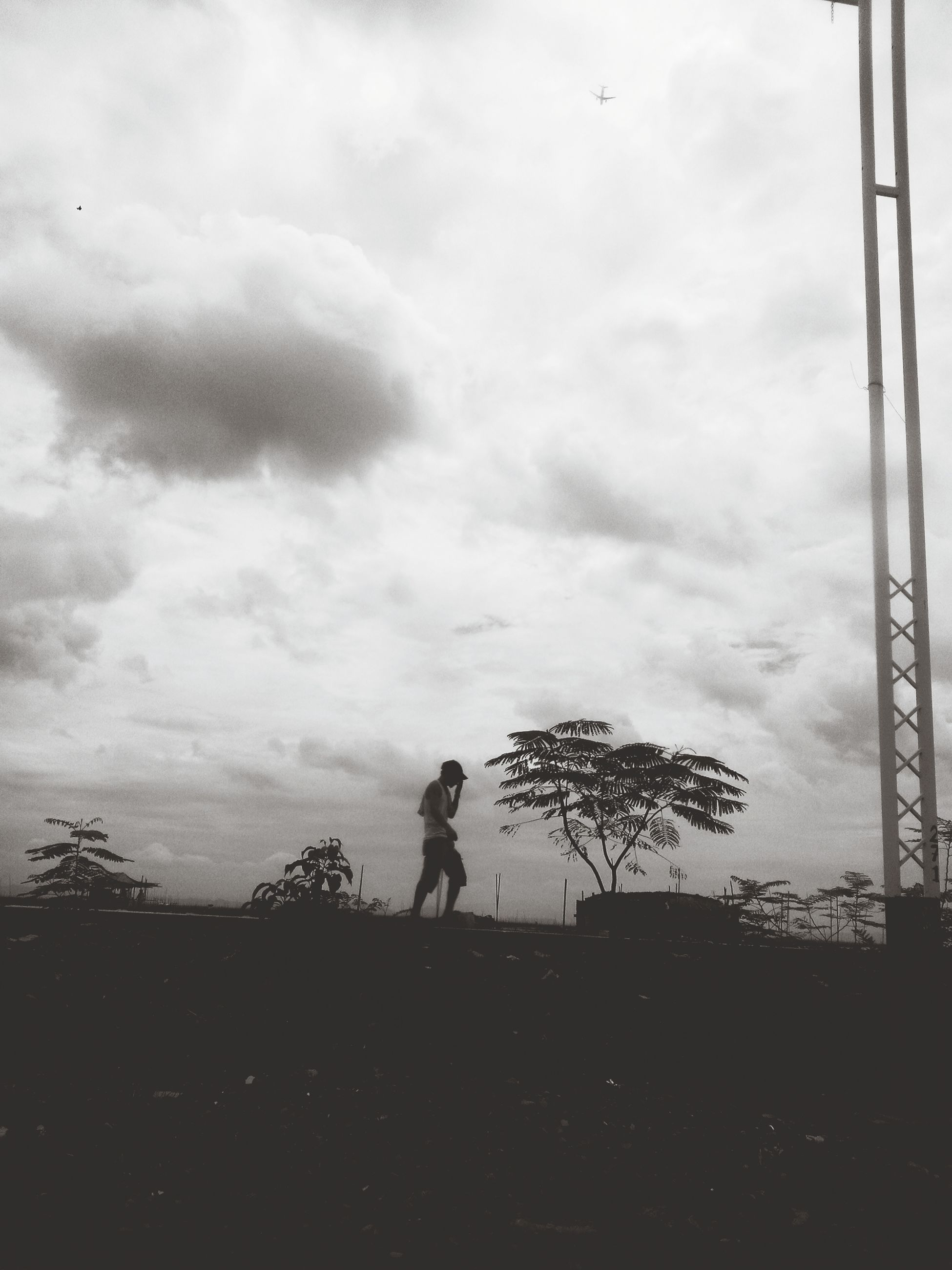 sky, cloud - sky, silhouette, leisure activity, lifestyles, full length, tree, cloudy, field, men, cloud, nature, low angle view, outdoors, landscape, standing, tranquility, day