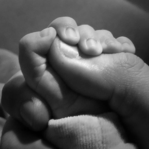 Close-up of hands holding baby