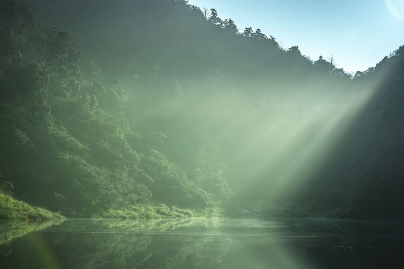 Sunlight streaming through trees by lake against sky