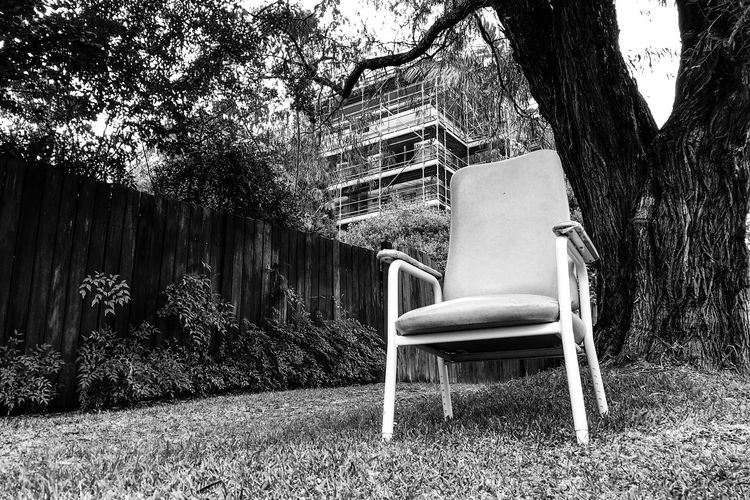 Chairs by tree against building