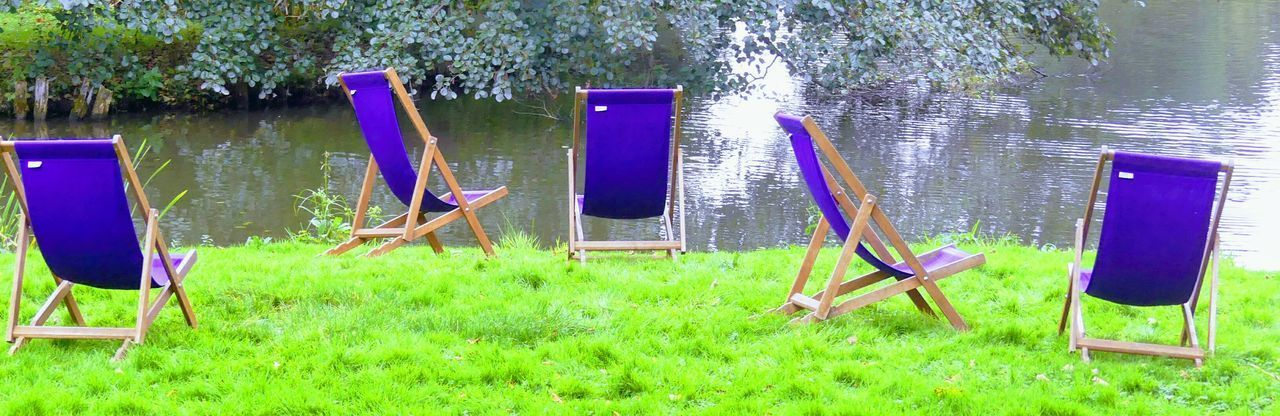 Grass Outdoors Day Green Color Nature No People Deckchairs Deck Chair Purple EyeEmNewHere