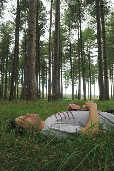 Lying Down Tree Grass Relaxation Forest Nature Lying On Back Tree Trunk One Person Day Scenics Freshness Lifestyles Walking Thetford Thetford Forest Norfolk Tranquility Tranquil Scene Tree Trunk Outdoors Beauty In Nature Branch Growth Nature