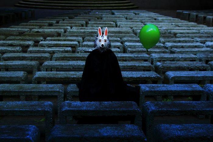 Magic First Eyeem Photo Bunny  Magic Bunny 🐰 Photog Fotografia Ser