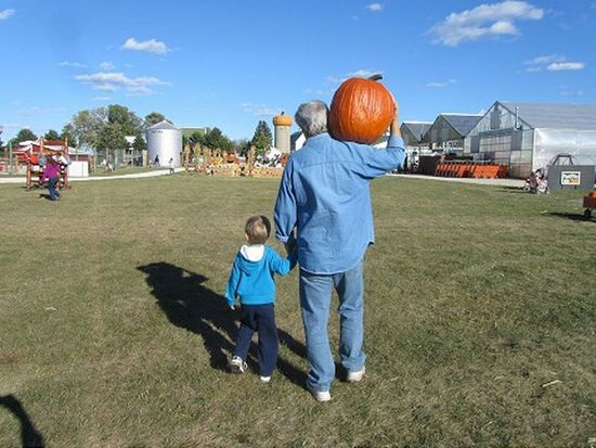 Father carrying a large pumpkin while holding sons hand Dad And Son Pumpkinpatch Eye4photography  Color Photography Check This Out EyeEm Best Shots EyeEm Gallery Hand In Hand Walking Around Father & Son Handinhand Editorial  Pumpkin Pumpkins Fall Autumn Family Son Child Taking Photos Pumpkin Patch Family❤ Family Time Father And Son Color