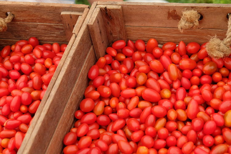 tomato Food And Drink Food Healthy Eating Freshness Large Group Of Objects Wellbeing Vegetable Red Fruit Container Wood - Material Abundance Tomato Box Agriculture Organic High Angle View No People Crate Harvesting Ripe Farmer's Market Box - Container Street Market พำก Fruits