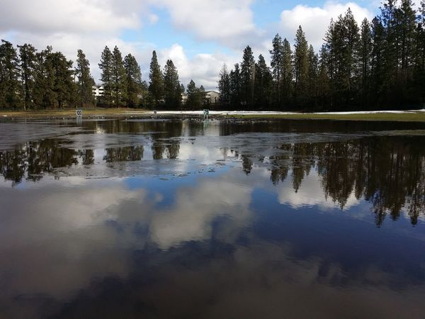 Trees Tree_collection  Water And Sky Collection Reflections In The Water Sky And Water Sky_collection Sky And Clouds Water_collection Water Reflections Water Flooded Reflections Golf Golf Course Golfcourse Mirrored Reflection Mirror Effect