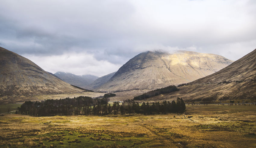Beautiful Scotland Beauty In Nature Cloud Cultures Day Explore Forest Highlands Hiking Landscape Mountain Nature Nature_collection No People Outdoors Scenics Scotland Scottish Highlands Sheep Tranquil Scene Tranquility Travel Tree Wanderlust Wheater Whisky