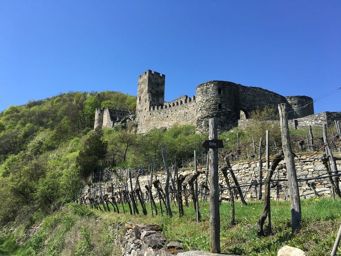 Old castle ruin in the Wachau valley, Austria Ancient Ancient Civilization Austria Building Exterior Castle Clear Sky History Mountain No People Old Ruin Outdoors Scenics Spring Springtime Tranquility Travel Destinations Vineyard