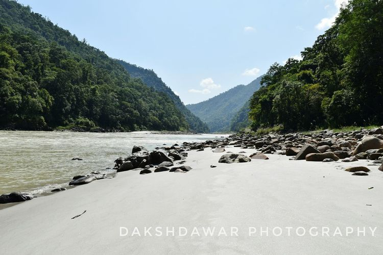 River Ganga flowing through beautiful mountains Nature In Bloom Freshness Beauty In Nature No People Plant India