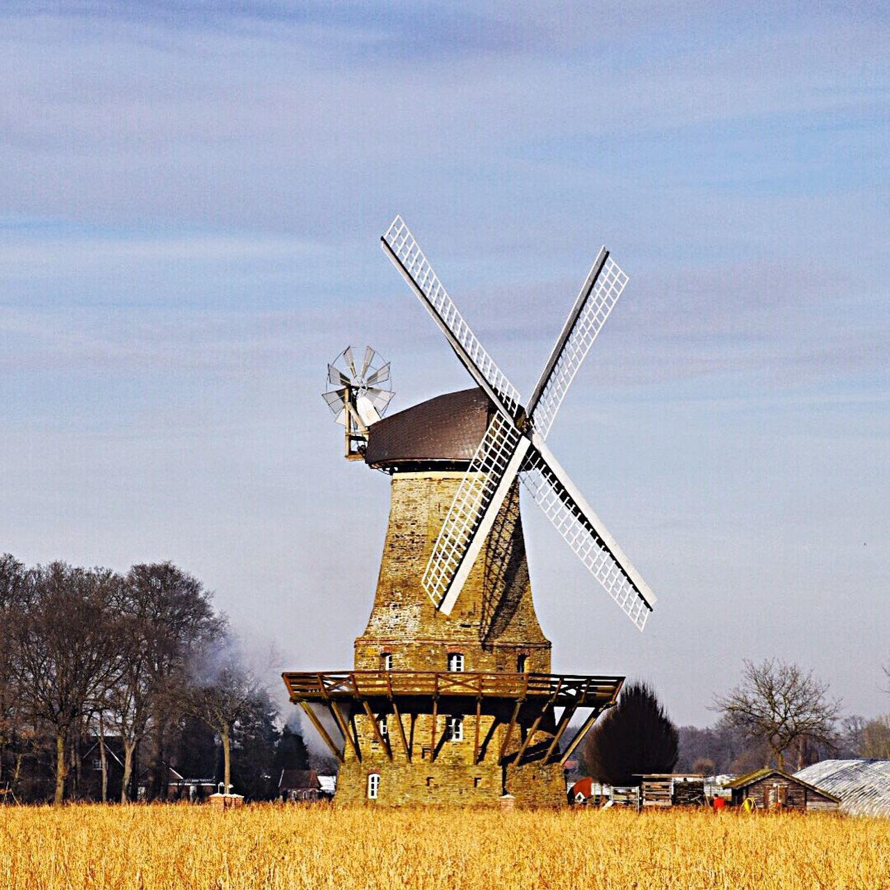 wind power, alternative energy, windmill, wind turbine, field, renewable energy, traditional windmill, day, sky, outdoors, fuel and power generation, nature, agriculture, no people, built structure, tree, landscape, rural scene, architecture, beauty in nature, scenics, industrial windmill, grass