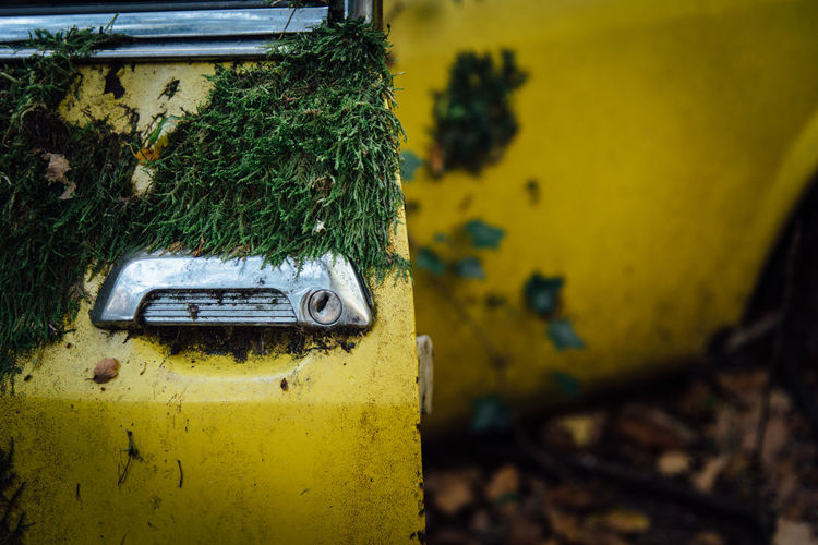 Automobile Car Vintage Vintage Car Retro Yellow No People Close-up Metal Day Abandoned Rusty Nature Obsolete Run-down Decline Focus On Foreground Deterioration Outdoors Plant Damaged Land Vehicle Old Motor Vehicle Pollution Moss Moss & Lichen Mossy Grip Handle