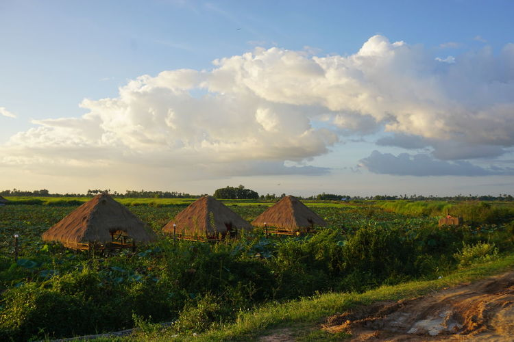 Agriculture ASIA Beauty In Nature Cambodia Cloud - Sky Day Dirt Track Field Grass Huts Group Of Huts Landscape Nature No People Outdoors Rural Scene Scenics Sky Straw Huts Tranquil Scene Tranquility
