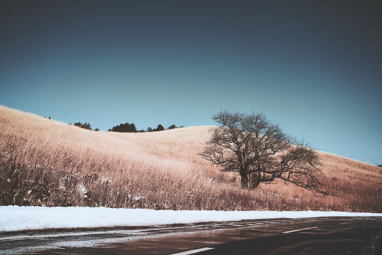 Scenic View Of Snow Covered Field Against Clear Sky