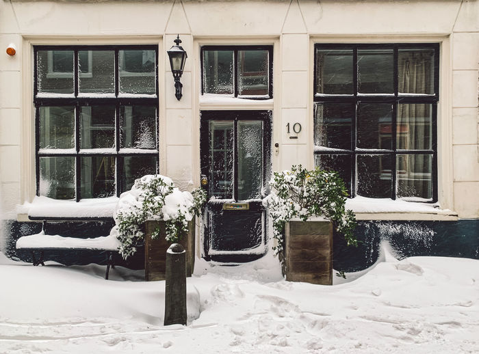 Potted plants on snow covered building