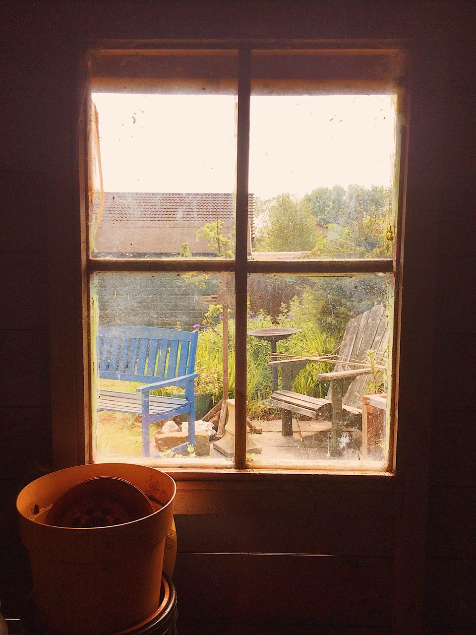 window, indoors, day, no people, potted plant, home interior, balcony, refreshment, window sill, plant, built structure, architecture, tree, nature, close-up