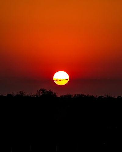 Safari on dusk. A New Beginning Kruger Park Safari Panasonic  LumixG80 EyeEmNewHere