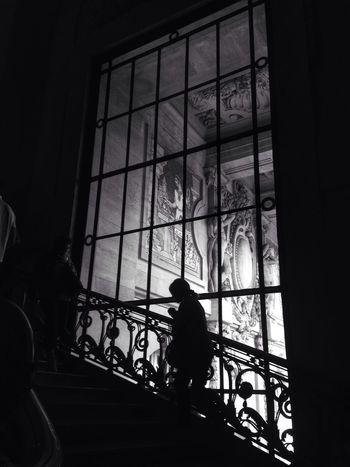Black And White Monochrome Grand Palais Paris