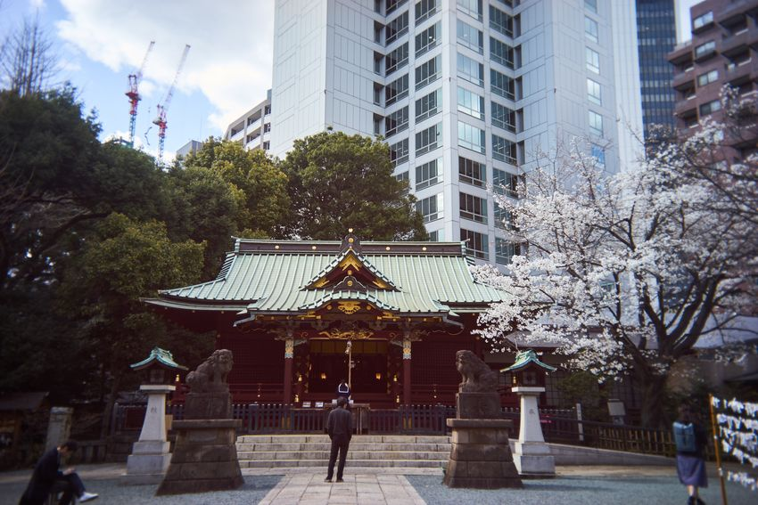 Eye4photography  Streetphotography Shrine Cherry Blossoms Sakura Utulens Architecture Building Exterior Built Structure Tree City Real People Outdoors Day Lifestyles Men Sky Skyscraper One Person People Adult Adults Only