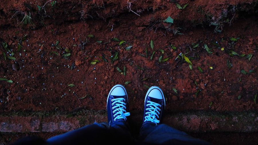 Low section of man wearing canvas shoes standing on ground