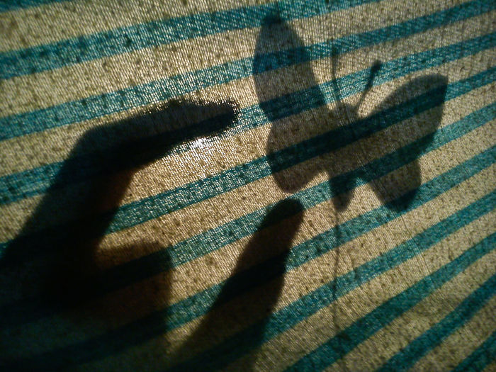 Shadow of hand and butterfly on textile