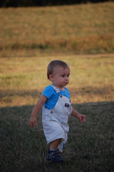 Babyhood Boys Childhood Field Full Length Innocence Outdoors Toddler  OshKosh Summertime Kid Toddleryears Toddlerwearing Oshkoshbgosh