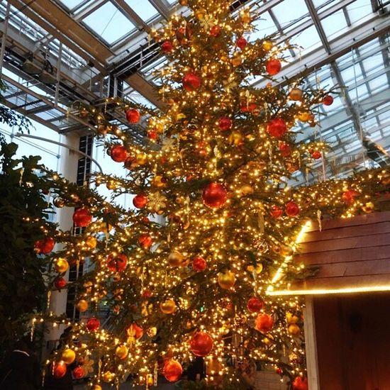 Tree Christmas Christmas Decoration Christmas Tree キラキラ