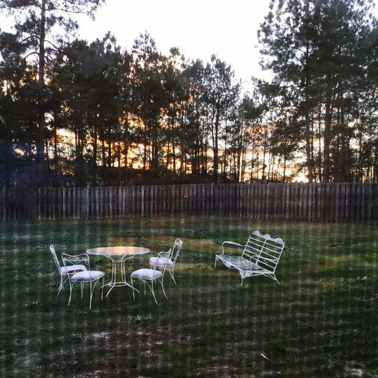 Throughawindow Screen Sky Pretty Set Chairs White Fence Bored Trees Backyard