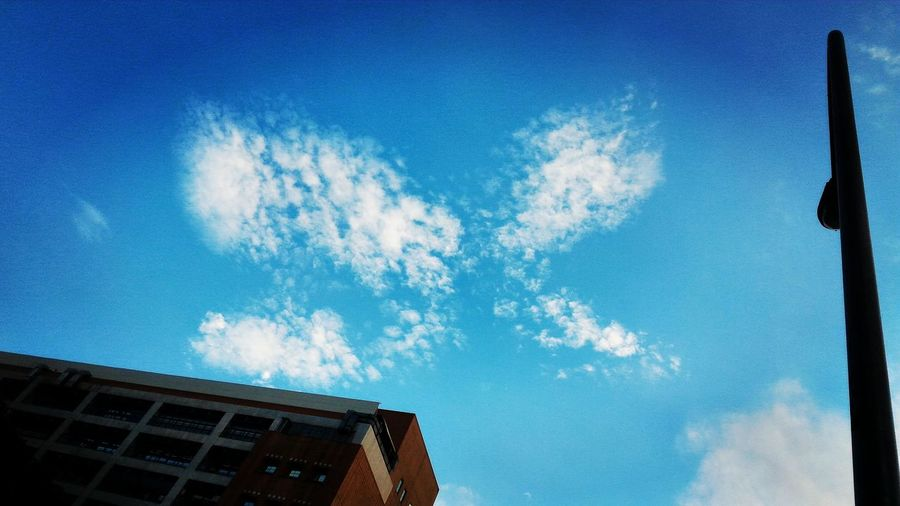 Nature Day Elevated View No People Selective Focus Outdoors Natural Pattern Blue Beauty In Nature OpenEdit Hanging Out Blue Sky Chromosomes