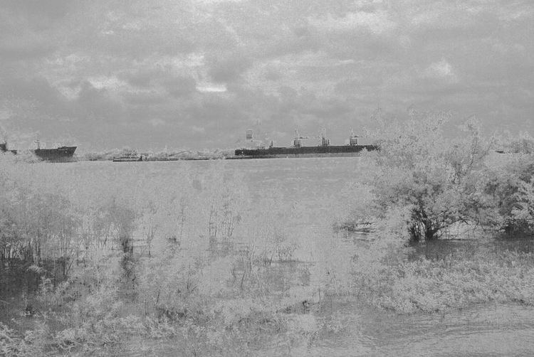 Architecture Beauty In Nature Day Infrared Photo Landscape Mississippi River Nature No People Outdoors Scenics Ship Details Ship On Wa Sky Tree Water