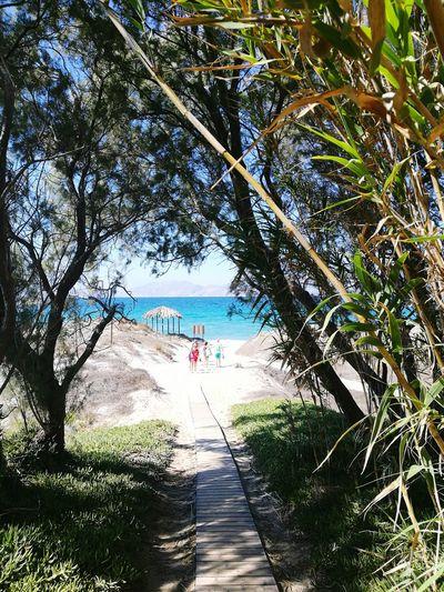Plagetamtam Beach Sea Tranquility Nature Amoureuse💑 Vacances ♥